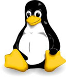 Linux Hosting Services in Delhi